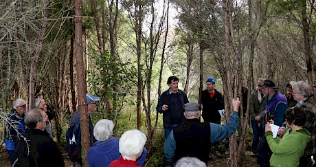 Join Tāne's Tree Trust