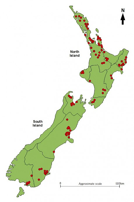 Location of planted stands of native trees and shrubs assessed by Tāne's Tree Trust.